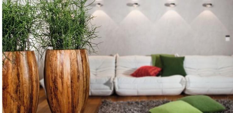 feng shui mit pflanzen - Zimmerpflanzen Warme Wohnzimmer